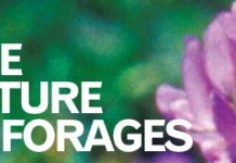 oct12_futureforages_story