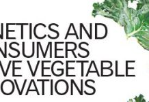 feb14_veg_innovations_main