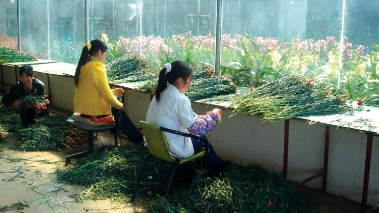 Asia's floriculture industry