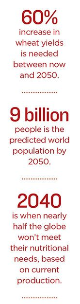 people-stats-165x625