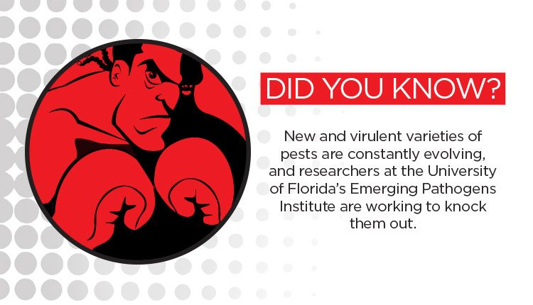 pathogens-did-you-know