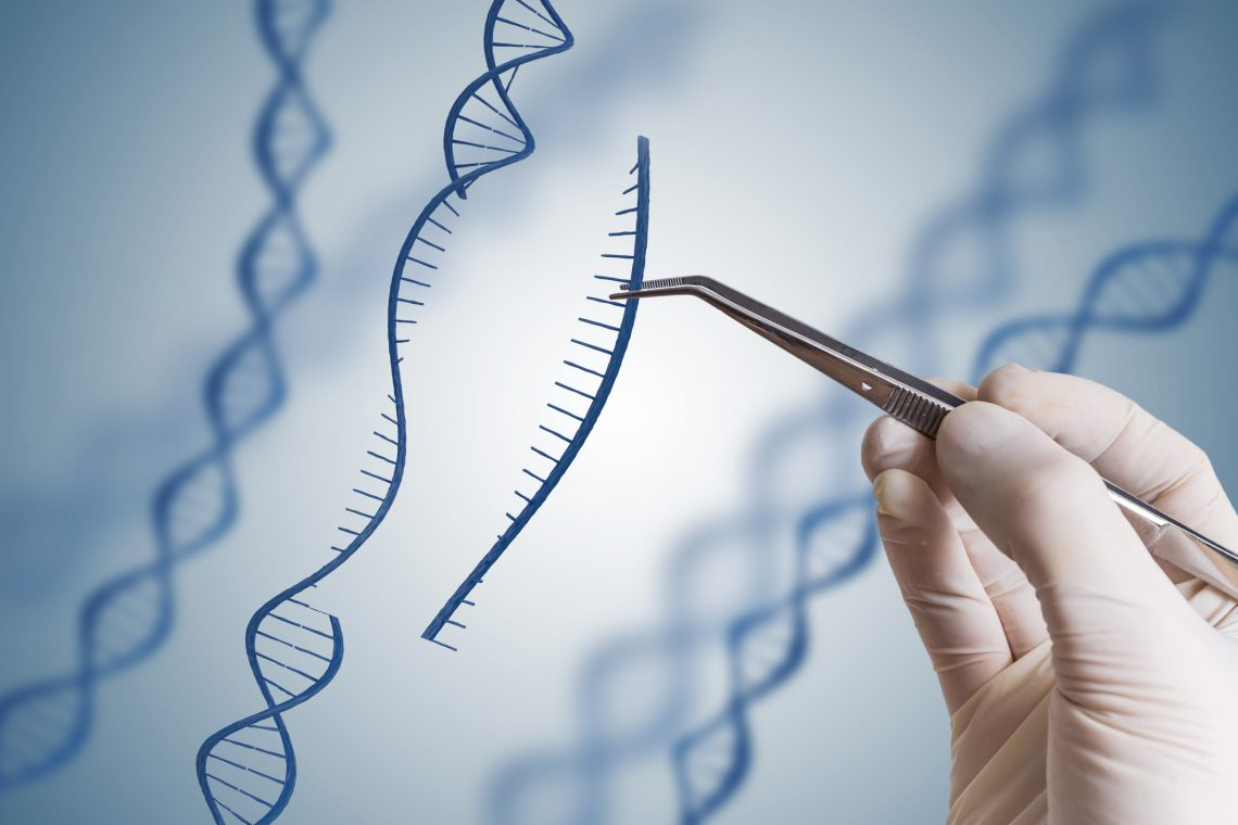 How Gene Editing is Reshaping Agriculture - Seed World